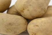 Cena brambor na podzim 2018 vzroste nejen kvůli suchu