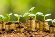 Ministryně financí nechce zvyšovat daně, ale chce efektivně hospodařit