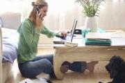 Nové formy zaměstnávání si žádají novou úpravu zákonů