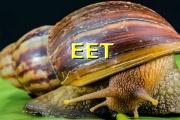 Podnikatelé, které EET ještě čeká, se musí obrnit trpělivostí, zatím žádný posun nenastal