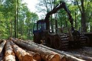 Podnikatelé těžící dřevo s kůrovcem by se měli dočkat obdobné podpory státu jako zpracovatelé daného produktu