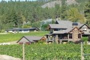 Pro venkovské podnikání by měl přijít nadějnější podzim