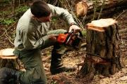 Stavebníci, lesníci i zemědělci musí dbát o bezpečnost práce stále pečlivěji