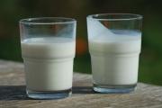 Zemědělcům svítá naděje. Ceny mléka se zvedají